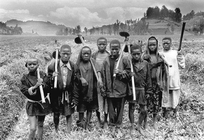 дети, работа, фотограф
