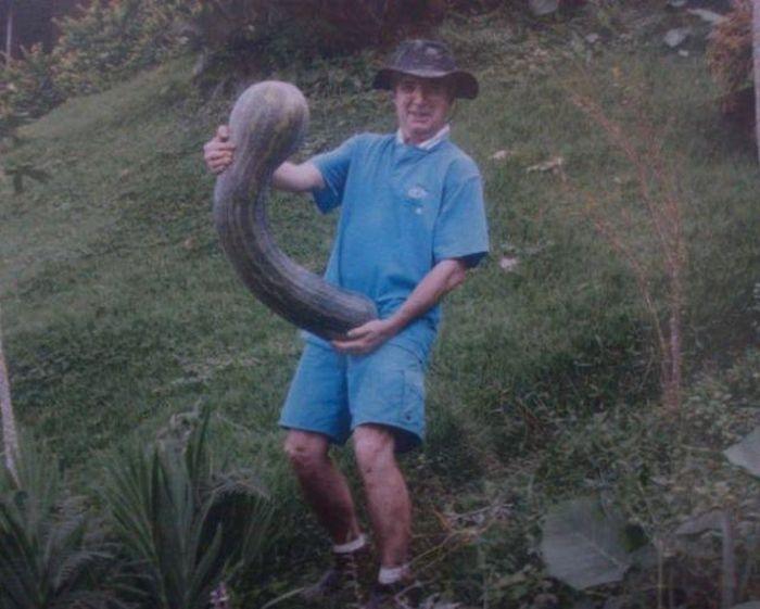 Пошлые картинки про взрослых (45 фото)