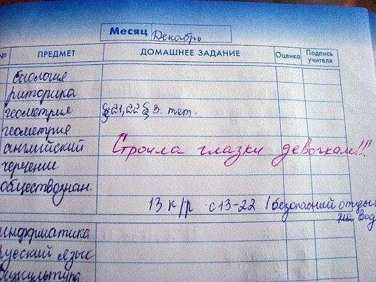 дневник, школа, юмор, записи,