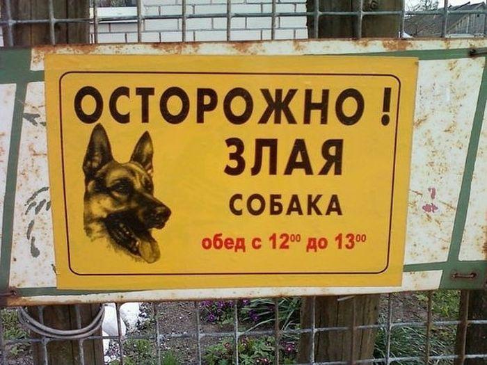 Смешной фотоприкол злая собака, обед, перерыв, табличка