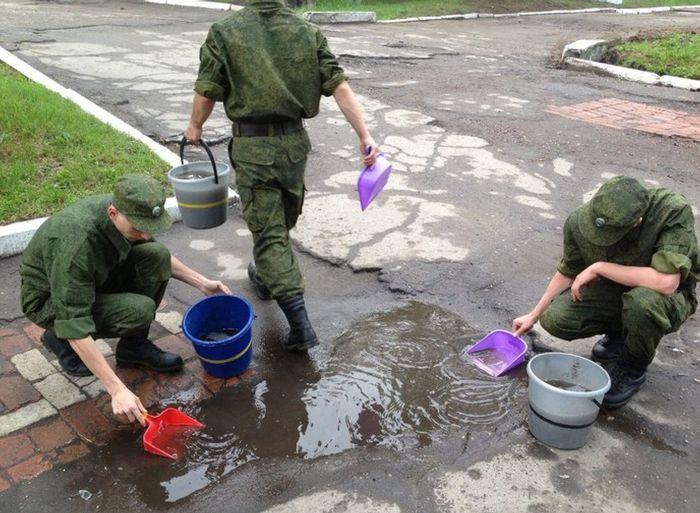 Фотка армия, вода, солдаты, уборка