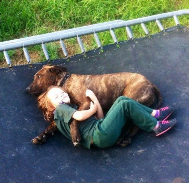 Смешные картинки девочка, обнимается, собака