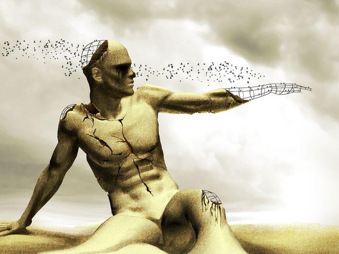 тело человека, организм, волосы, ногти, мышцы, строение человека
