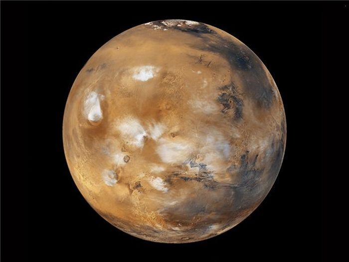 Кто полетит на Марс (4 фото)