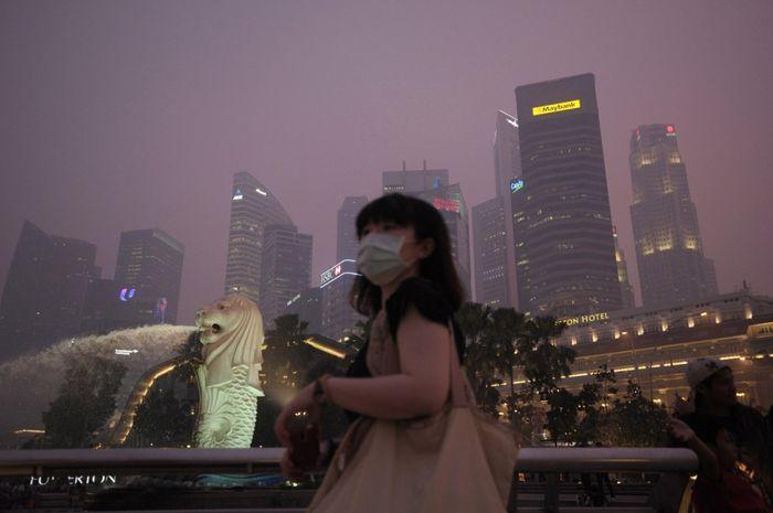 сингапур, дым, огонь, город, поля,