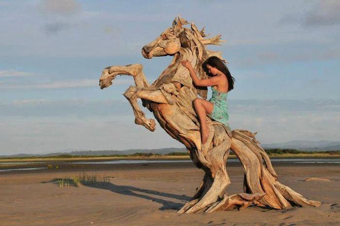 скульптор, древесина, мастер, побережье