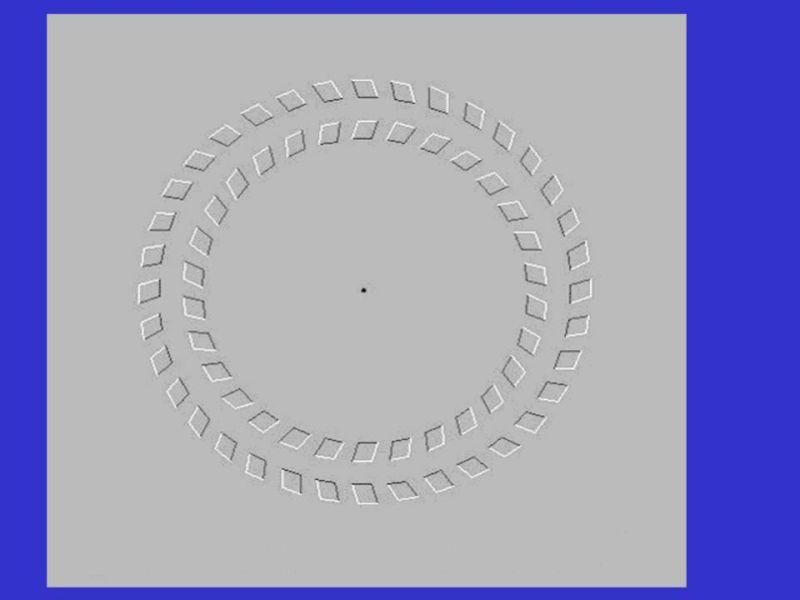 Подборка прикольных иллюзий (16 фото)