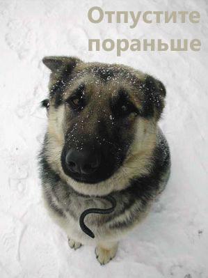 http://ua.fishki.net/picsw/072008/11/5nicca/016_5nicca.jpg