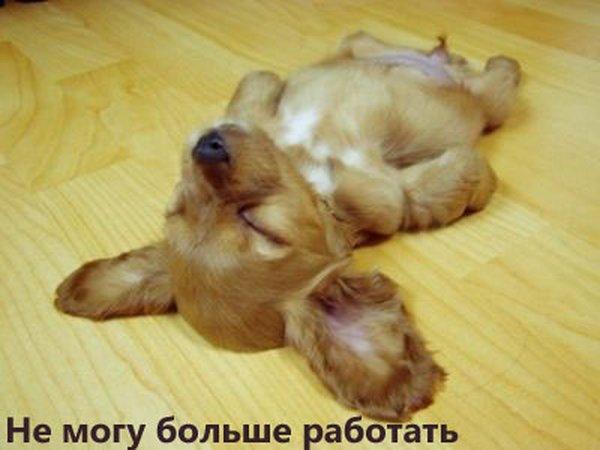 http://ua.fishki.net/picsw/072008/11/5nicca/tn.jpg