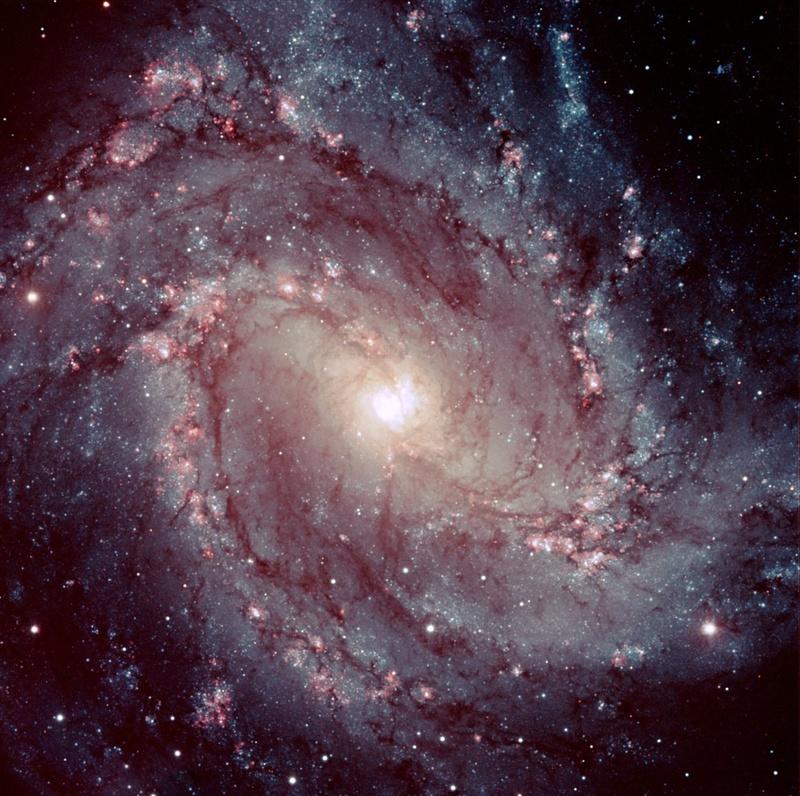 Spiral galaxy M83