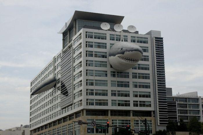 Здание канала Discovery (6 фото)