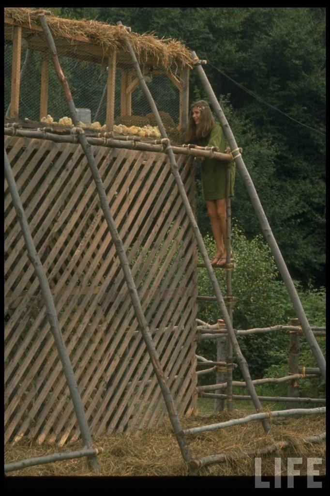 0 4141e  Вудсток 1969 года на снимках журнала Life