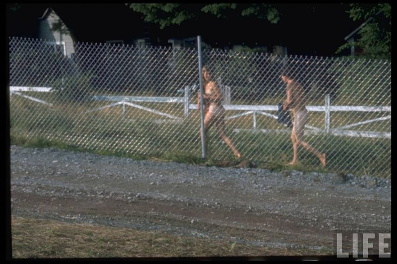 0 41442  Вудсток 1969 года на снимках журнала Life