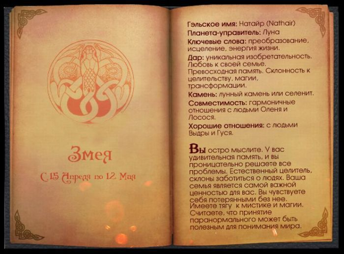 Кельтский гороскоп (14 фото)