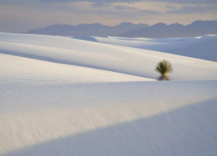 Красивые пейзажи и неповторимая природа (40 Фото)