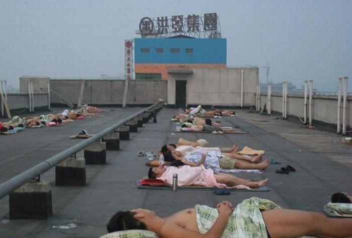 Китайские студенты спасаются от жары (15 фото)