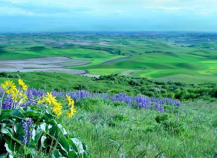 Прекрасный ландшафт штата Вашингтон (10 Фото)
