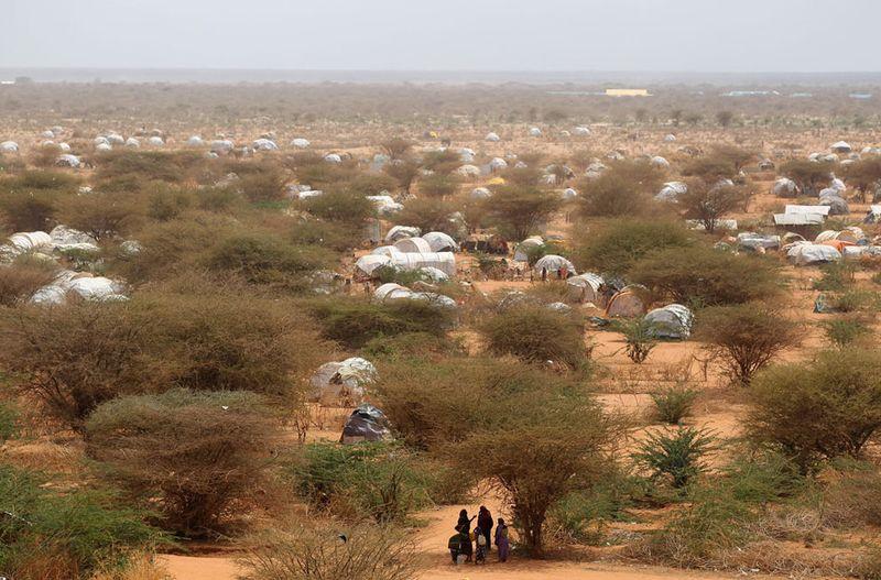 hungymamafrika12 Голод в Восточной Африке