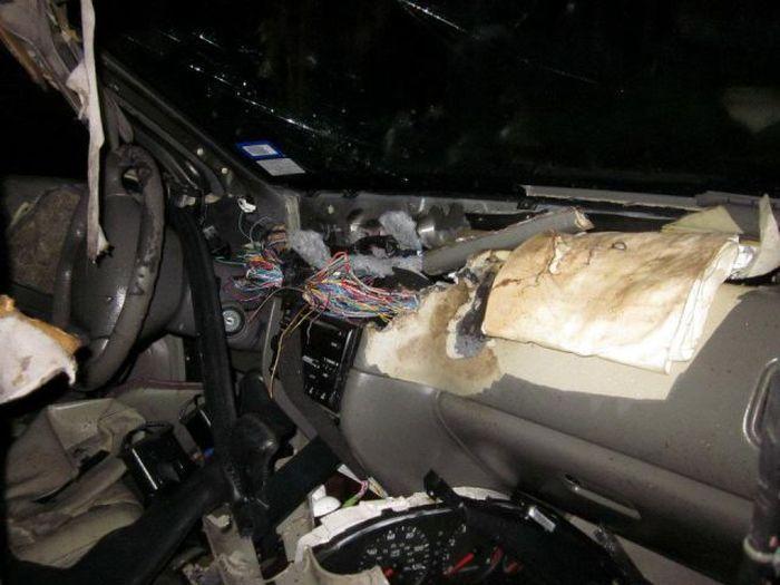 Четверо вандалов уничтожили 14 автомобилей за ночь! (10 фото)