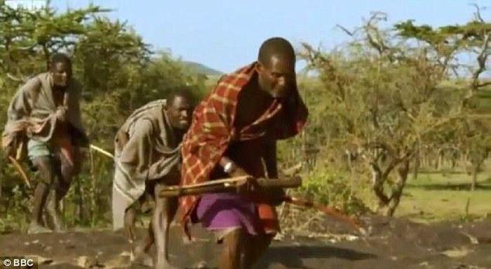 Как африканцы добывают еду (8 фото)