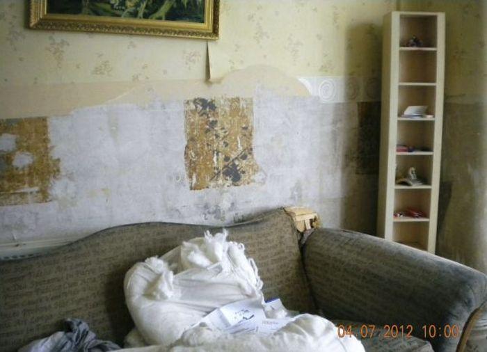 Отомстил арендодателю (12 фото)