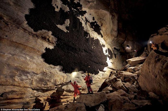 Загадочный рисунок в пещере (7 фото)