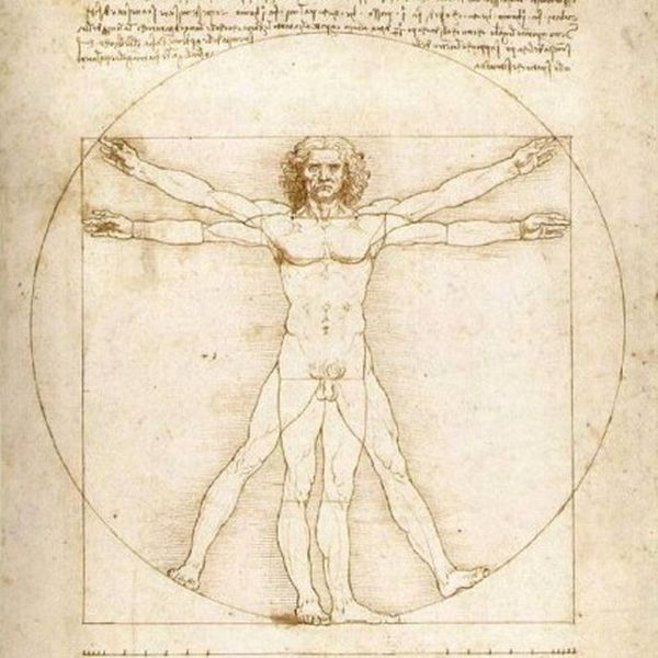 Бесполезные органы человеческого тела (6 фото)