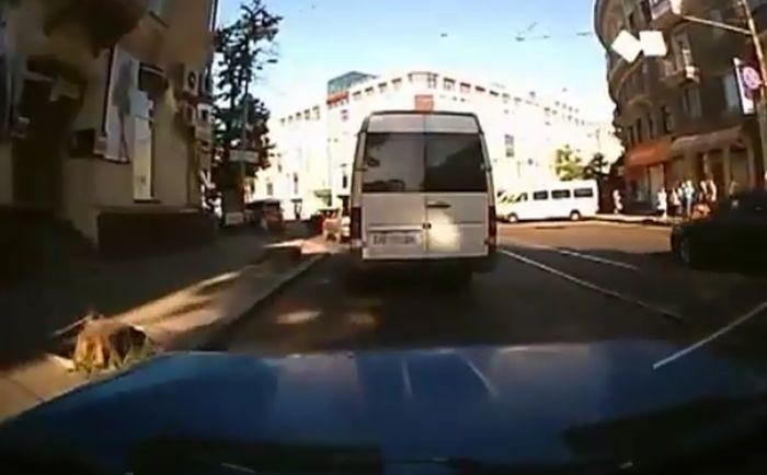 Как выходят из маршрутки в Днепропетровске (Видео)