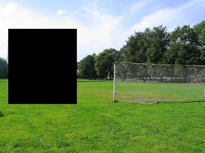 Футбольное поле с изюминкой (2 фото)