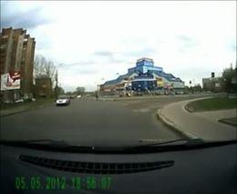 Собака на пешеходном переходе