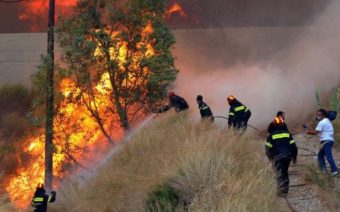 Лесные пожары в Южной Европе (25 фото)