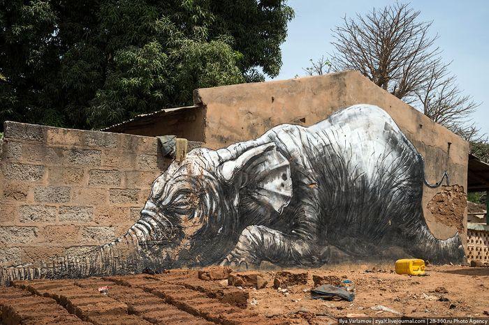 гамбия, уличные художники , африка