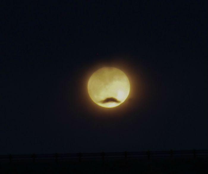Улетное фото крутая фотка, луна, прикол, усы