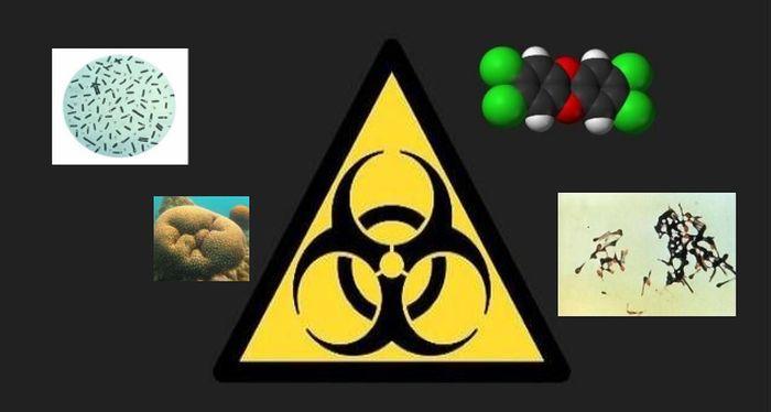 яд, опасность, мир, человек, токсичные