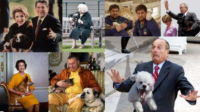 политик, президент, глава государства, собака, кот, кошка