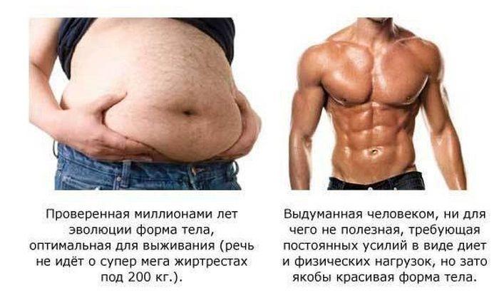 живот, жир, толстый