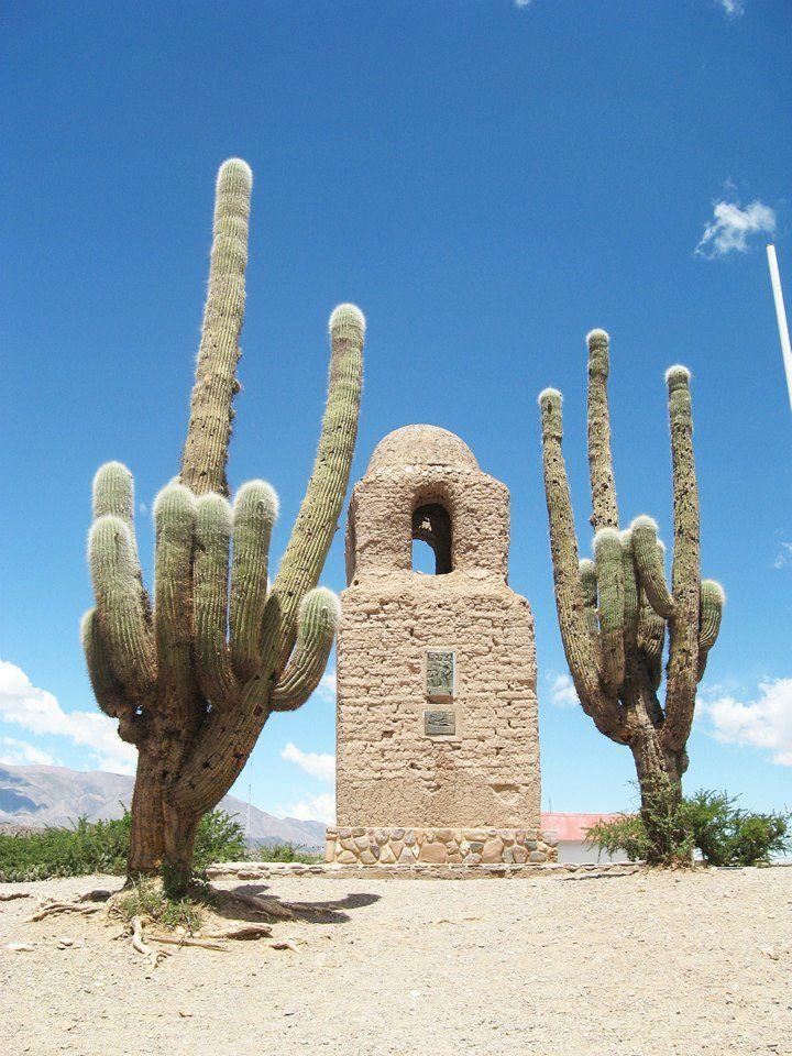 Отпадные фотки кактус, колодец, пустыня, часовня