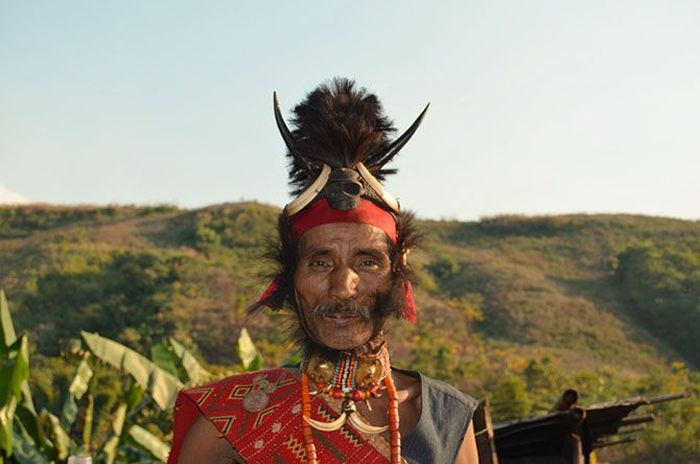 племя, коньяк, индия