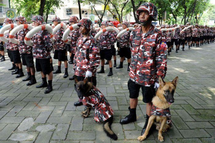 Фотожесть костюм, подразделение, полиция, собака