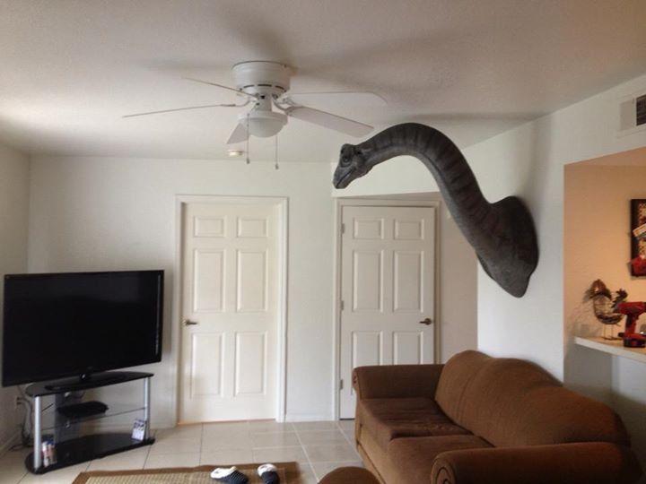 Новые фото голова, динозавр, змея, шея