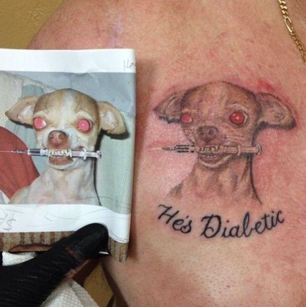 Фото диабет, прикол, собака, татуировка