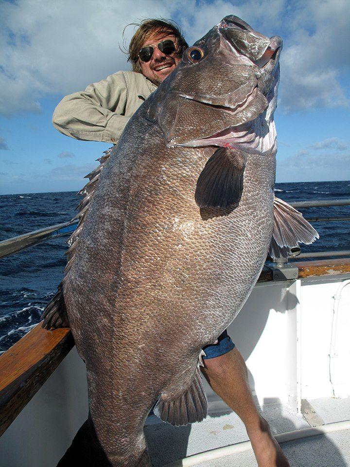 Прикол огромная рыба, прикол, рыбалка, улов