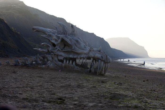 голова дракона, кости, пляж, песок, британия
