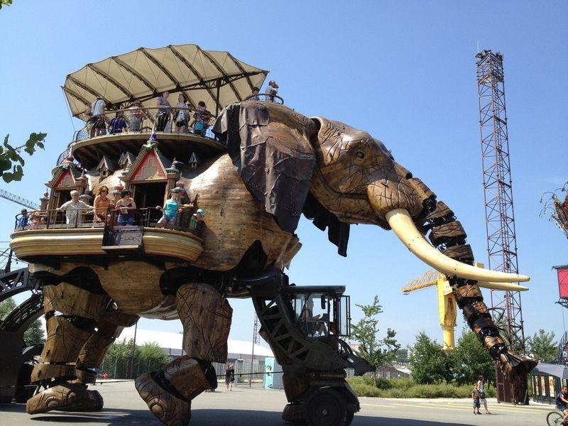 Юмор бивни, прикол, слон, транспорт