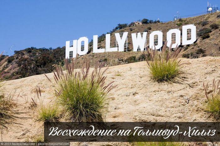 голливуд, сша, кино, голливуд-хиллз
