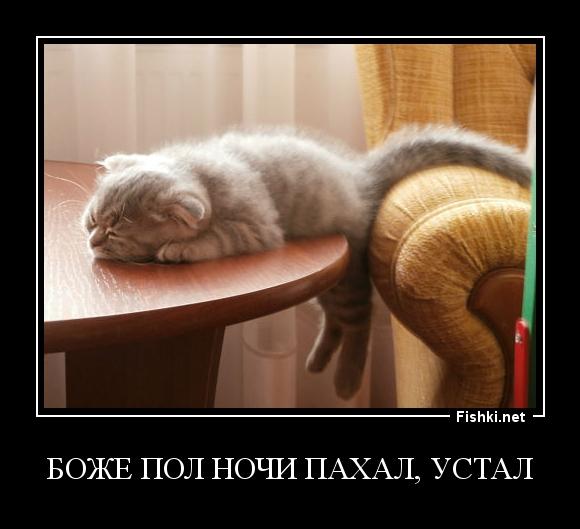 Боже пол ночи пахал, устал