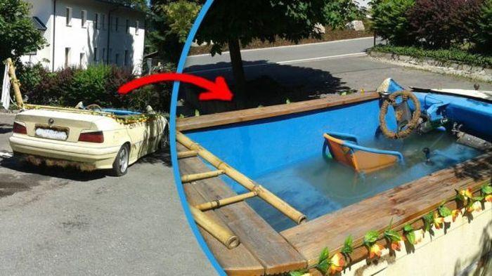 Фанни фото аквариум, бассейн, в машине, круто