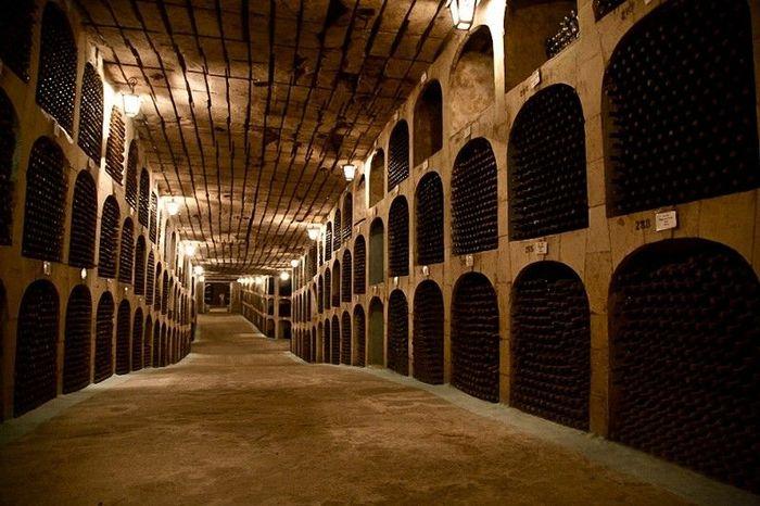 молдова, вино, винный подвал