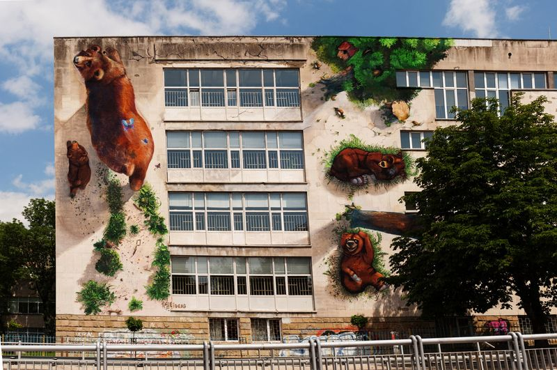 Красивые фото медведи, надпись, рисунок, стена