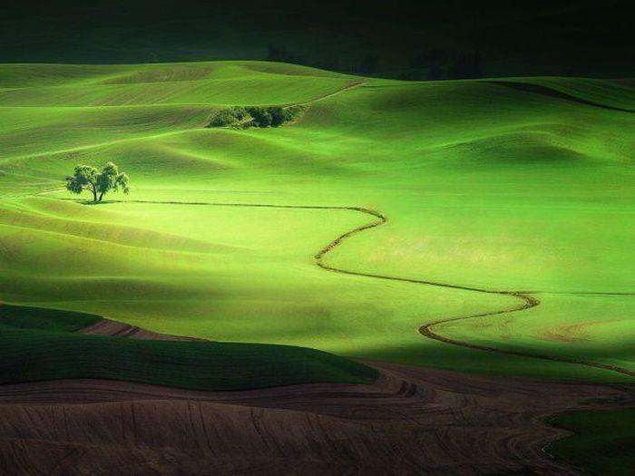 Шикарное фото горы, дорога, красота природы, поле